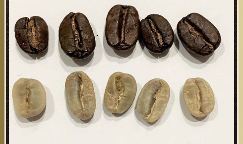 Quality Arabica certified coffees